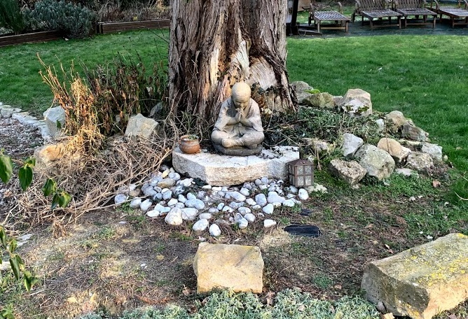 meditation tronc d'arbre
